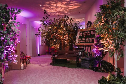 Enchanted forest entrance