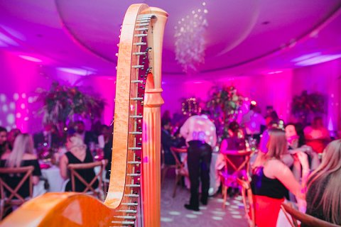 Enchanted forest harpist