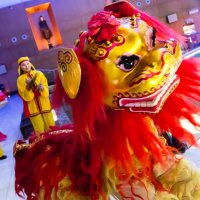 Chinese Acrobatics for events