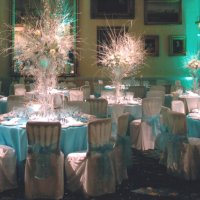 Chair Covers for weddings