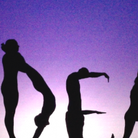 Evolve Acrobatic Silhouette Act