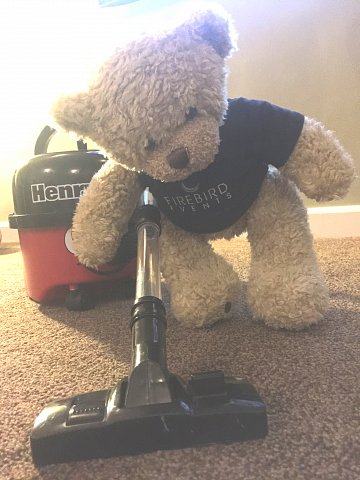 Ted doing some cleaning!