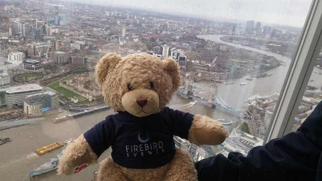 Ted in the Shard!