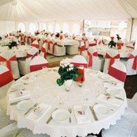 Chairs to hire for weddings