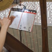 Harpists to hire for weddings