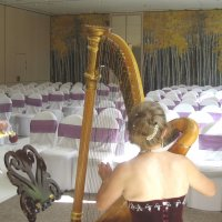 Harpists to hire