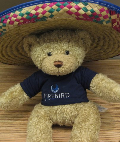Ted in Mexico