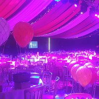 Marquee Party Set Up