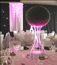 Topiary Ball Table Centre